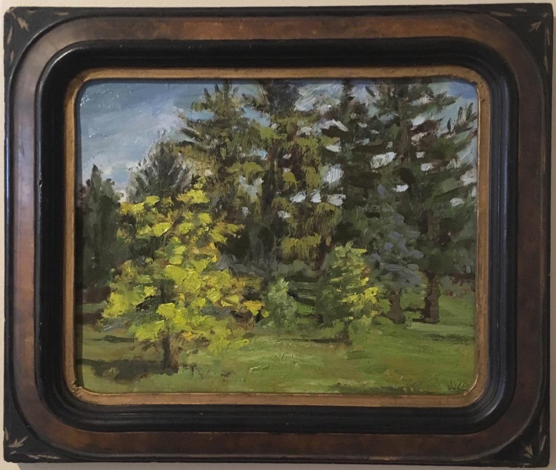 evergreengrove