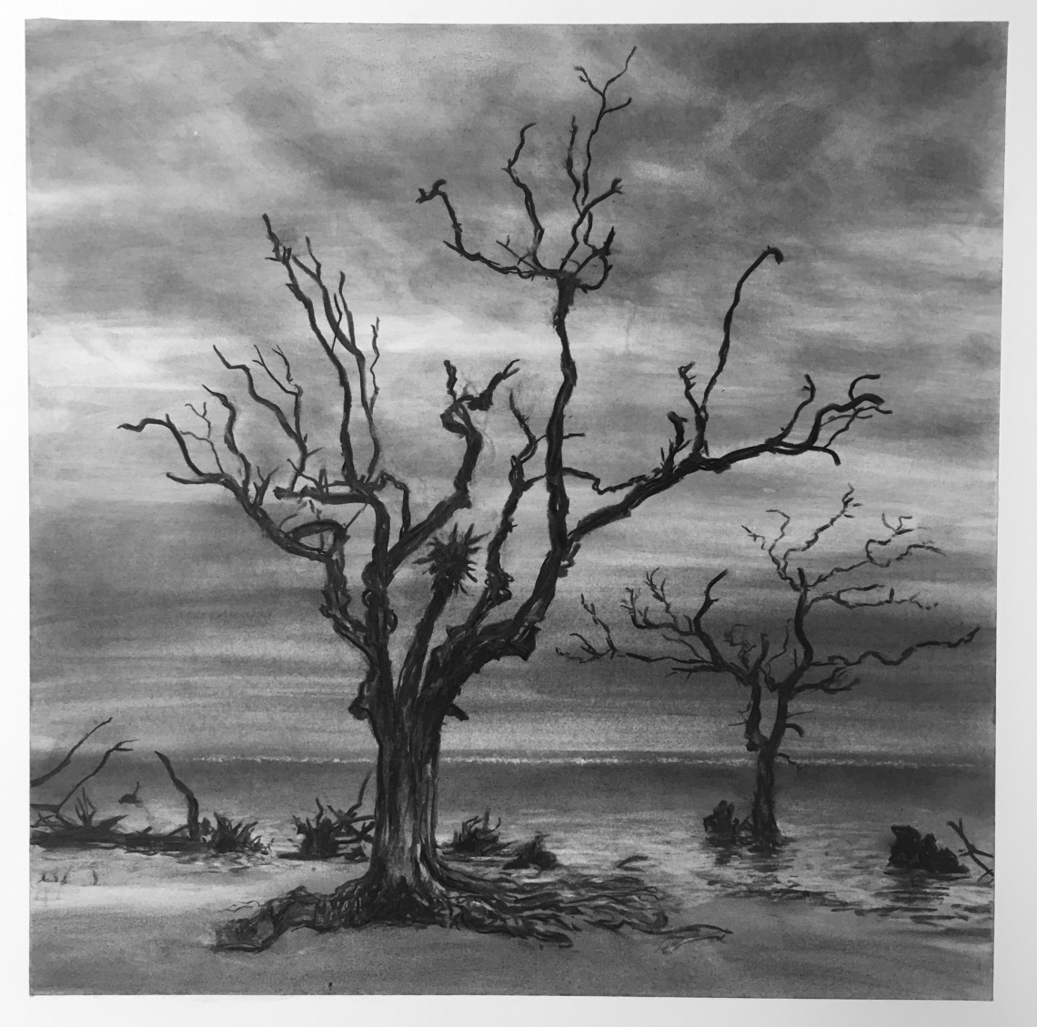 Hunting Island - Two Trees(LG)